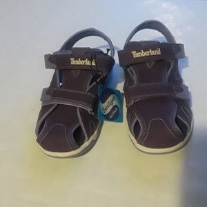 Timberland Sanitized sandals